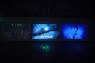 Resize_Song Sanghee, Come Back Alive Baby, 2017, 3 Channel video installation, 16'(installation view)